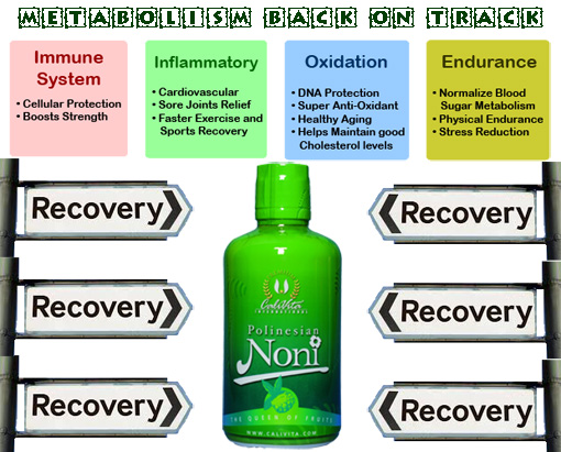 diet-supplement-herbal-noni-juice-calivita-ireland-metabolism
